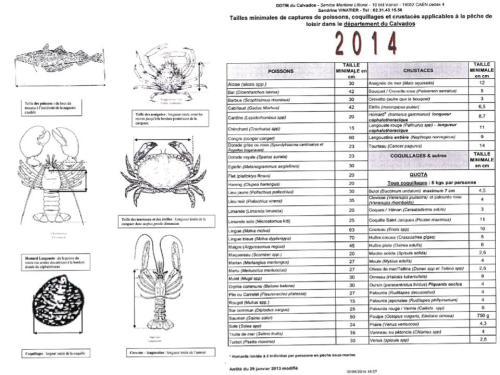 Reglementation tailles 2014